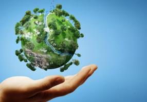 Урок 9: Охрана природы в России