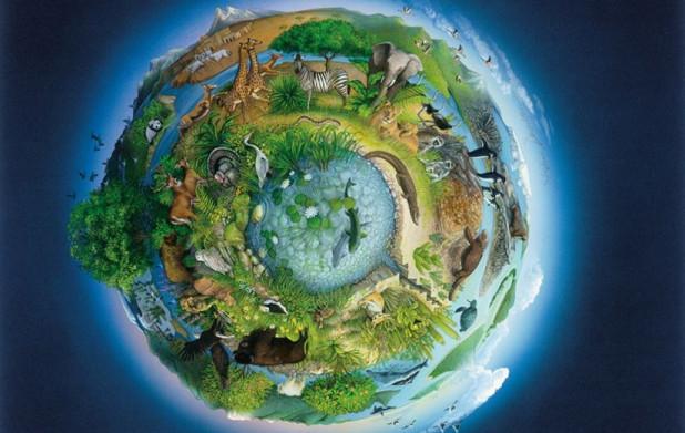 Урок 7: Биосфера и её роль
