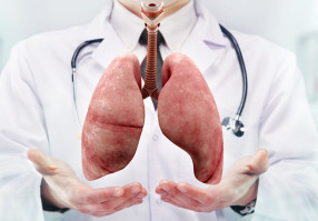 Урок 20: Болезни дыхательной системы