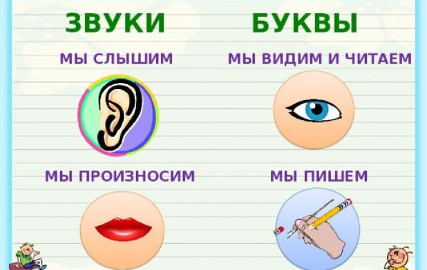 Урок 7: Отличие звуков от букв