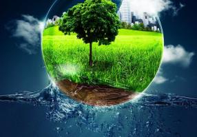 Урок 3: Экология Земли