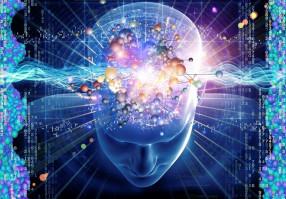Урок 2: Сознание человека
