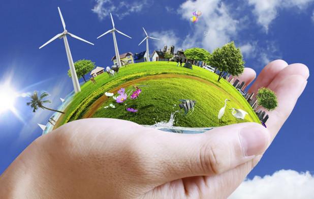 Урок 1: Факторы экологии