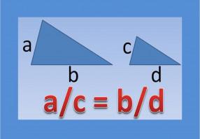 Урок 6: Подобные треугольники