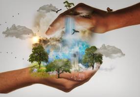 Урок 5: Природа и общество