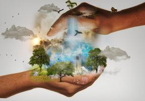 Урок 16: Природа Земли и человек
