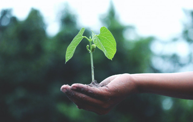 Урок 10: Природопользование