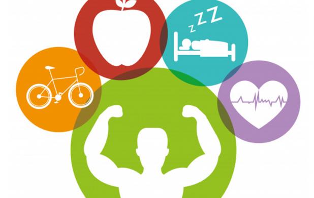 Урок 9: Здоровый образ жизни