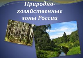 Урок 8: Природно - хозяйственная зона